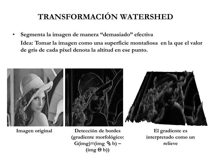 TRANSFORMACIÓN WATERSHED