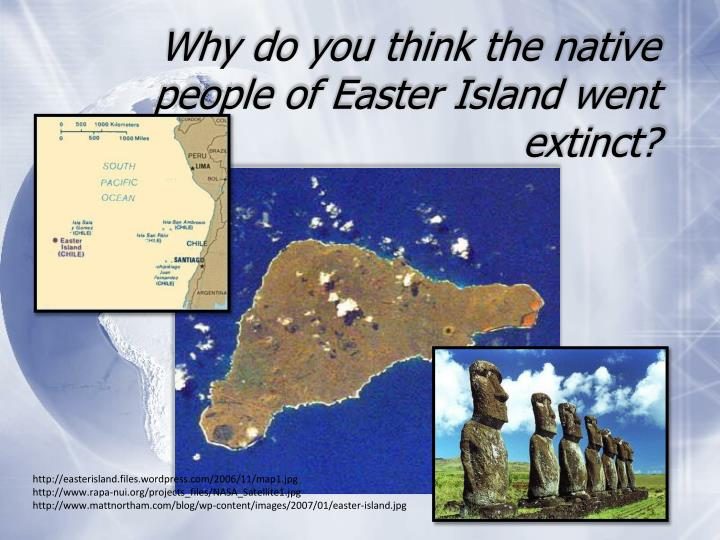 why do you think the native people of easter island went extinct n.