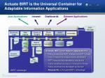actuate birt is the universal container for adaptable information applications