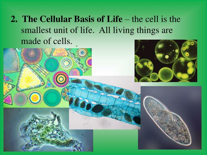 2.  The Cellular Basis of Life