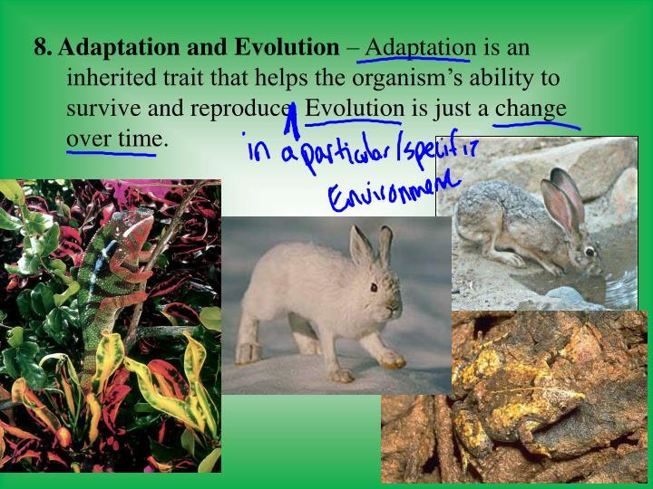 8. Adaptation and Evolution