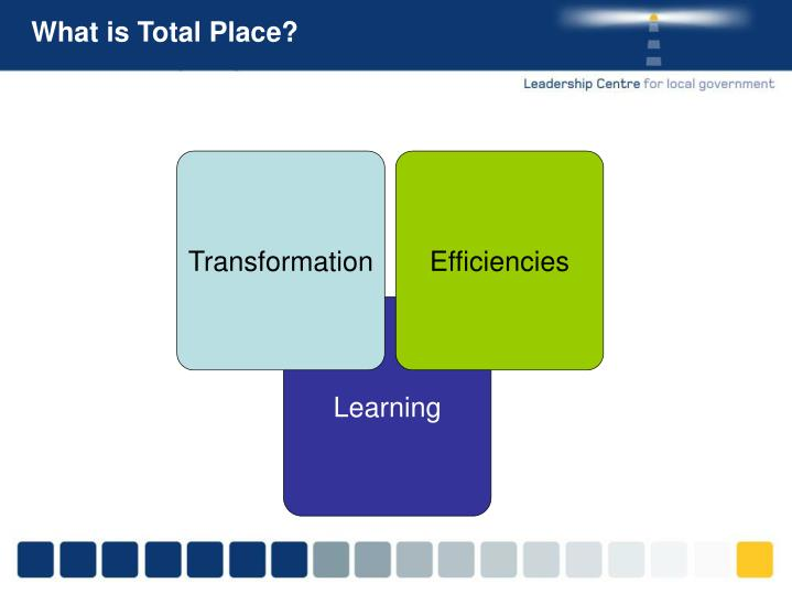 What is Total Place?