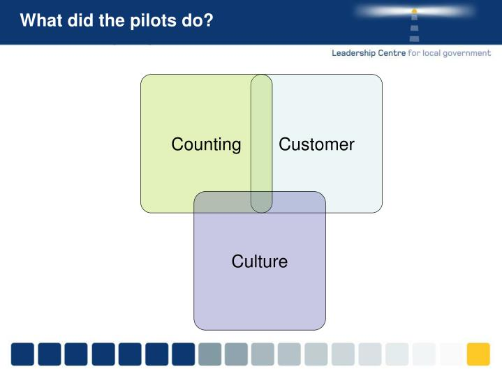 What did the pilots do?