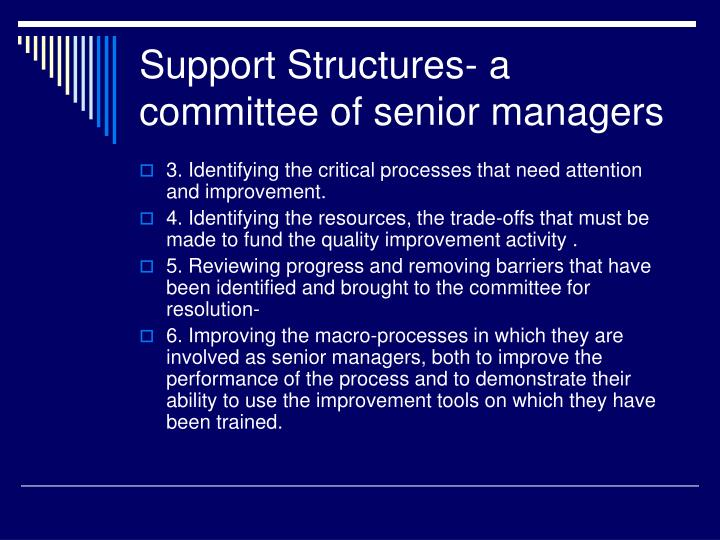 Support Structures- a committee of senior managers