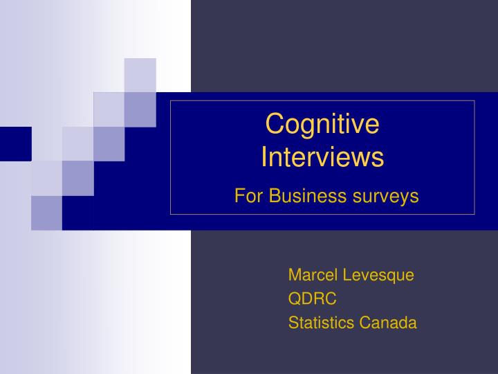 cognitive interviews for business surveys n.