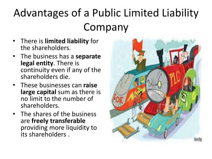 Advantages Of A Public Limited Liability Company
