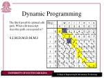 dynamic programming22