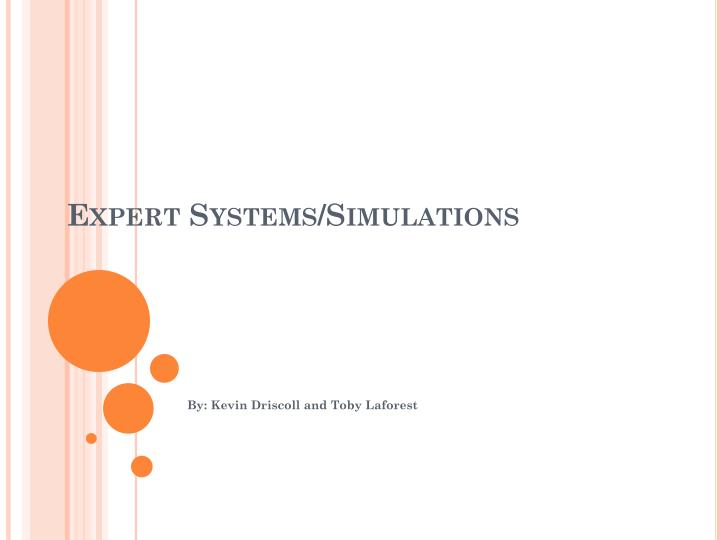 expert systems simulations n.