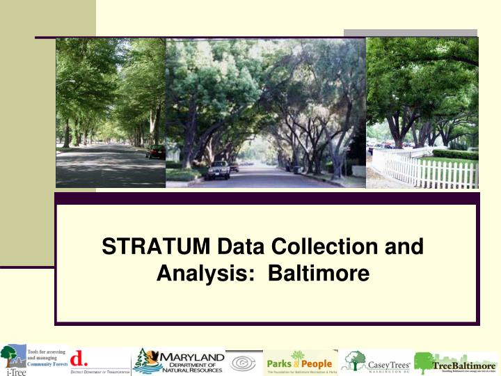 stratum data collection and analysis baltimore n.