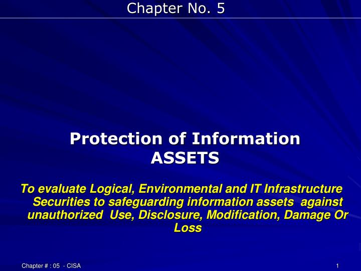 protection of information assets n.