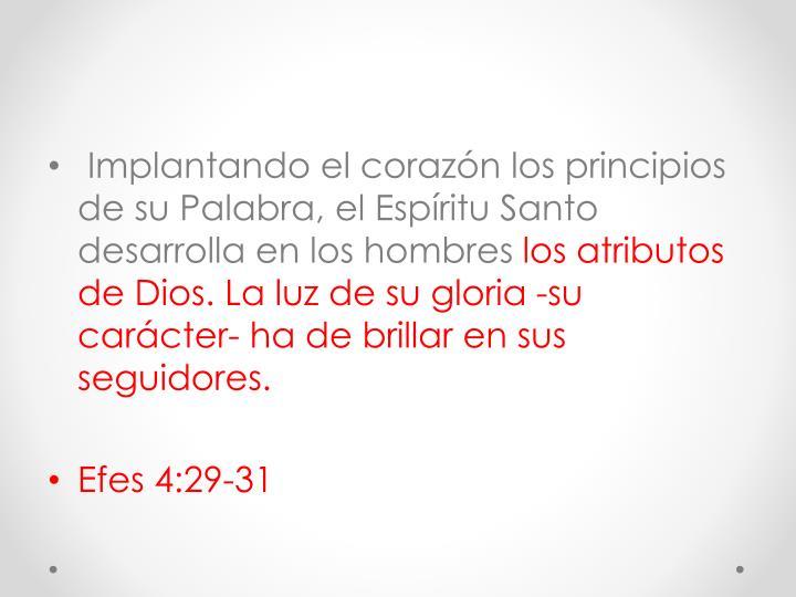 Implantando el corazón los principios de su Palabra, el Espíritu Santo desarrolla en los hombres