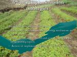 6 th year implementation strategies