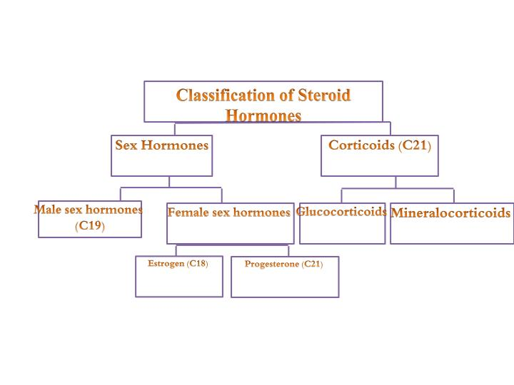 Classification of Steroid Hormones
