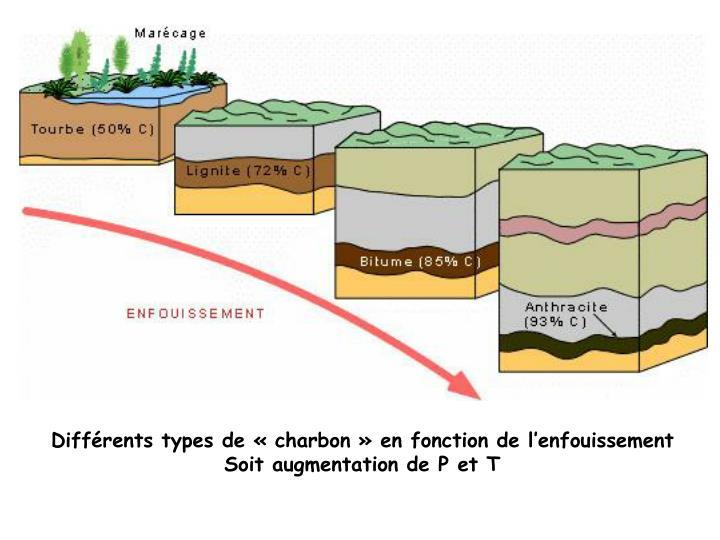 Différents types de «charbon» en fonction de l'enfouissement