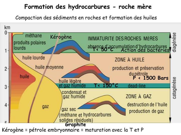 Formation des hydrocarbures - roche mère