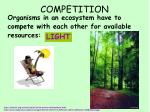 competition4