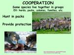cooperation same species live together in groups ex herds packs colonies families etc1