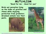 mutualism good for me good for you