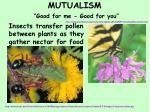 mutualism good for me good for you1