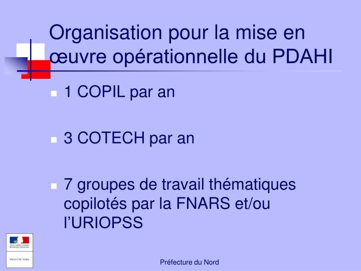 Organisation pour la mise en œuvre opérationnelle du PDAHI