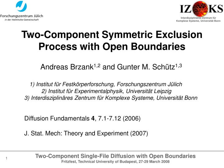two component symmetric exclusion process with open boundaries n.