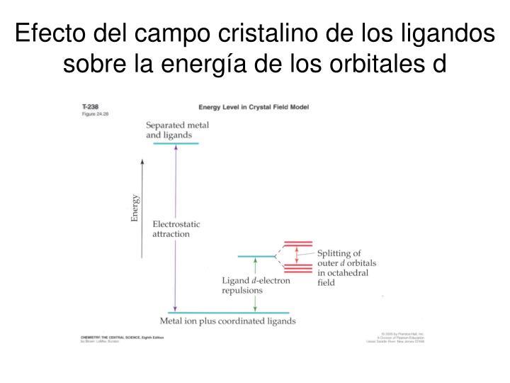 Efecto del campo cristalino de los ligandos sobre la energía de los orbitales d