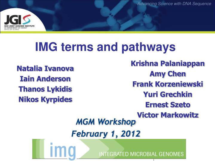 img terms and pathways n.