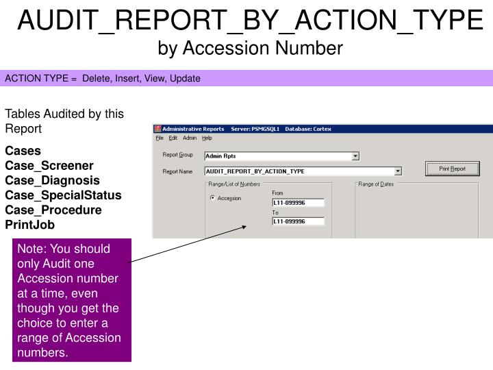 AUDIT_REPORT_BY_ACTION_TYPE