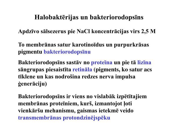 Halobaktērijas un bakteriorodopsīns