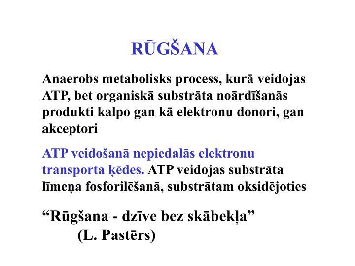 RŪGŠANA