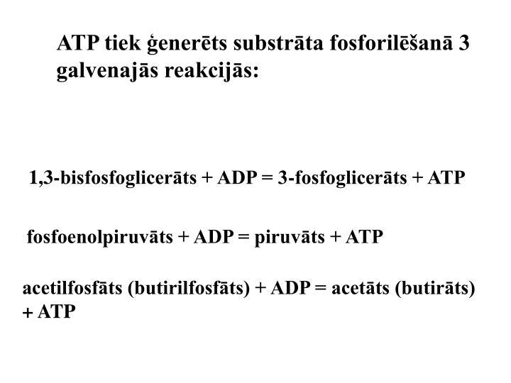 ATP tiek ģenerēts substrāta fosforilēšanā 3 galvenajās reakcijās: