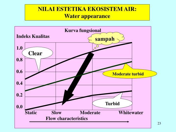 NILAI ESTETIKA EKOSISTEM AIR: