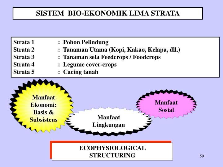 SISTEM  BIO-EKONOMIK LIMA STRATA
