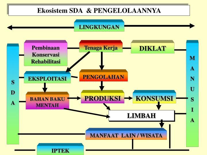 Ekosistem SDA  & PENGELOLAANNYA