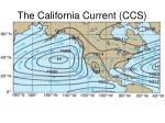 the california current ccs