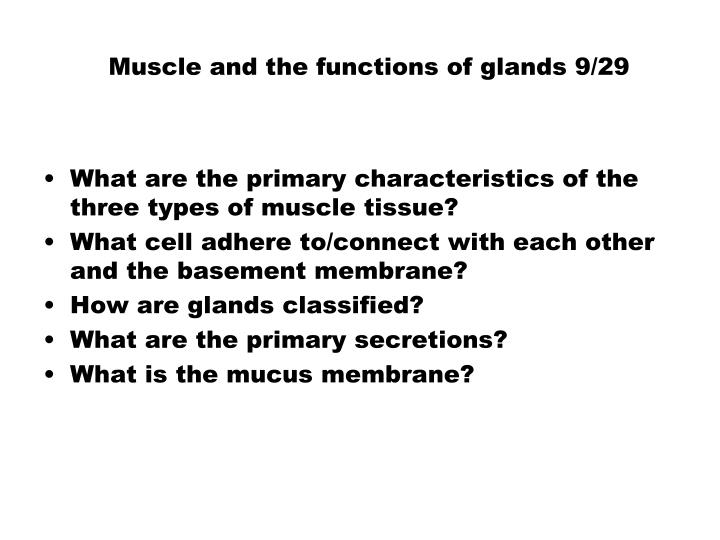 muscle and the functions of glands 9 29 n.