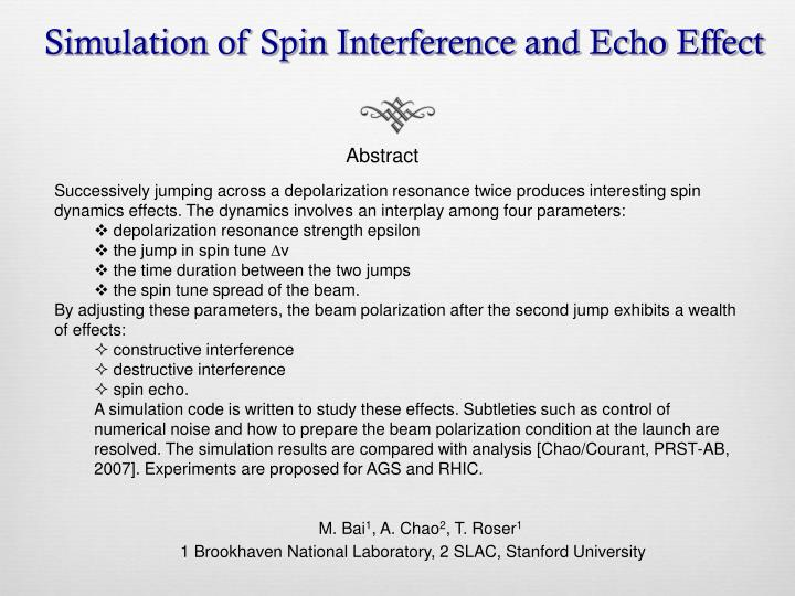 simulation of spin interference and echo effect n.