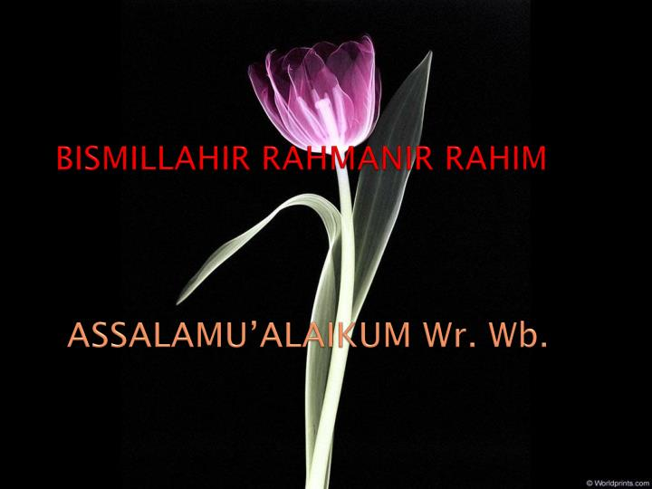 Bismillahir rahmanir rahim assalamu alaikum wr wb