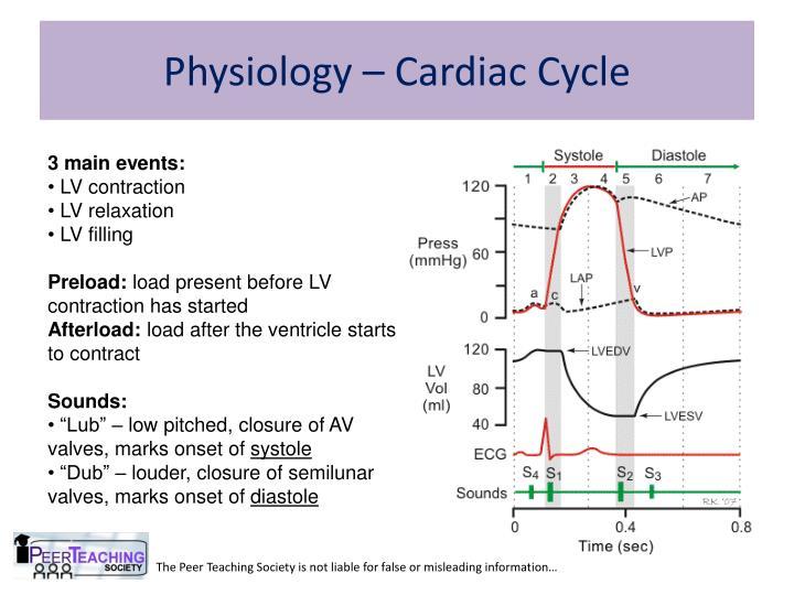 Physiology – Cardiac Cycle