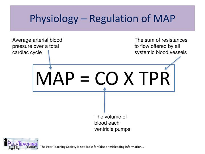 Physiology – Regulation of MAP