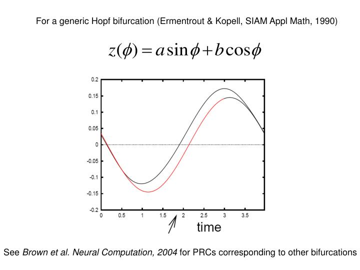For a generic Hopf bifurcation (Ermentrout & Kopell, SIAM Appl Math, 1990)