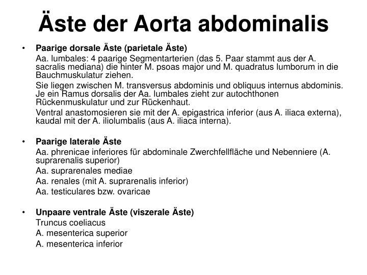 PPT - Äste der Aorta abdominalis PowerPoint Presentation - ID:6168599