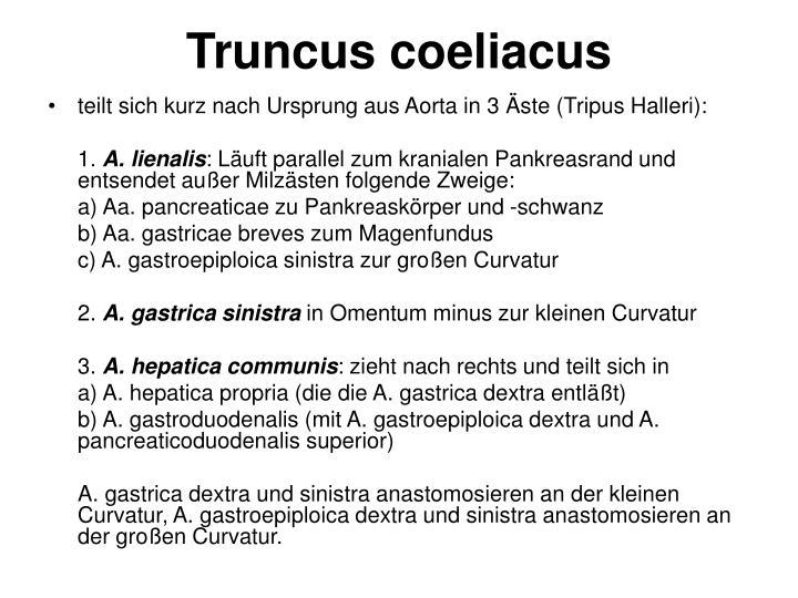 Atemberaubend Zweig Der Anatomie Bilder - Anatomie und Physiologie ...