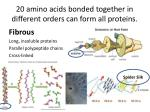 20 amino acids bonded together in different orders can form all proteins1