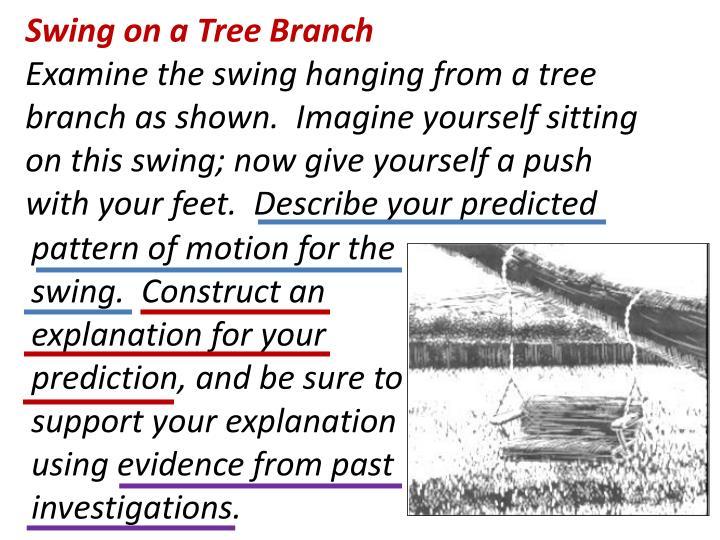 Swing on a Tree Branch