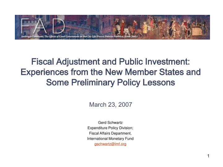 Fiscal Adjustment and Public Investment:
