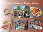festival plantes et fleurs cultiv es