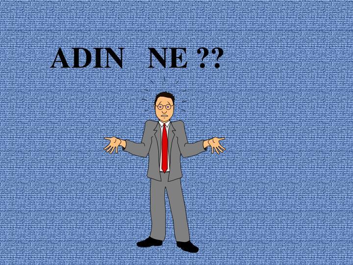 ADIN   NE ??