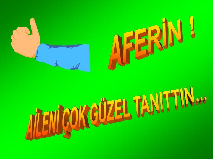 AFERİN !