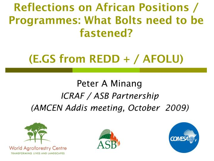 reflections on african positions programmes what bolts need to be fastened e gs from redd afolu n.